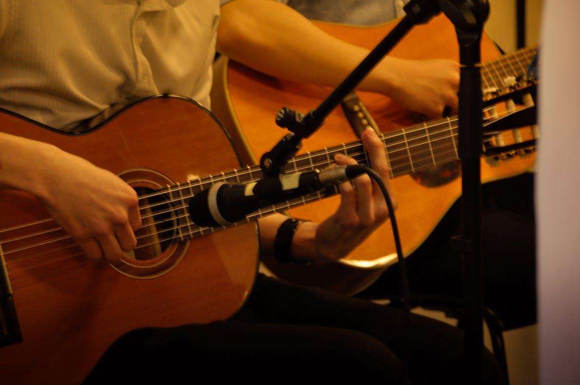 band, gathering, guitar
