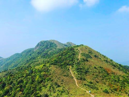 Gratis stockfoto met #natuur, Azië, berg, Bos