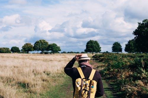 Foto stok gratis bidang, dewasa, lahan pertanian, laki-laki