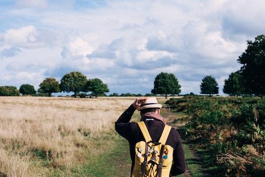 Man in Black Long Sleeve Shirt Walking Between Grass during Daytime