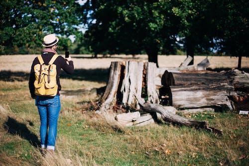 Gratis lagerfoto af Backpacker, bane, dagslys, fritid