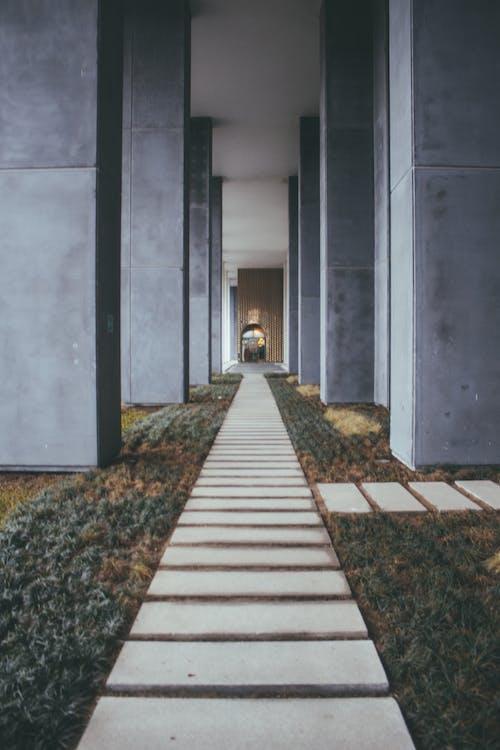 건물, 건축, 경치, 기둥의 무료 스톡 사진