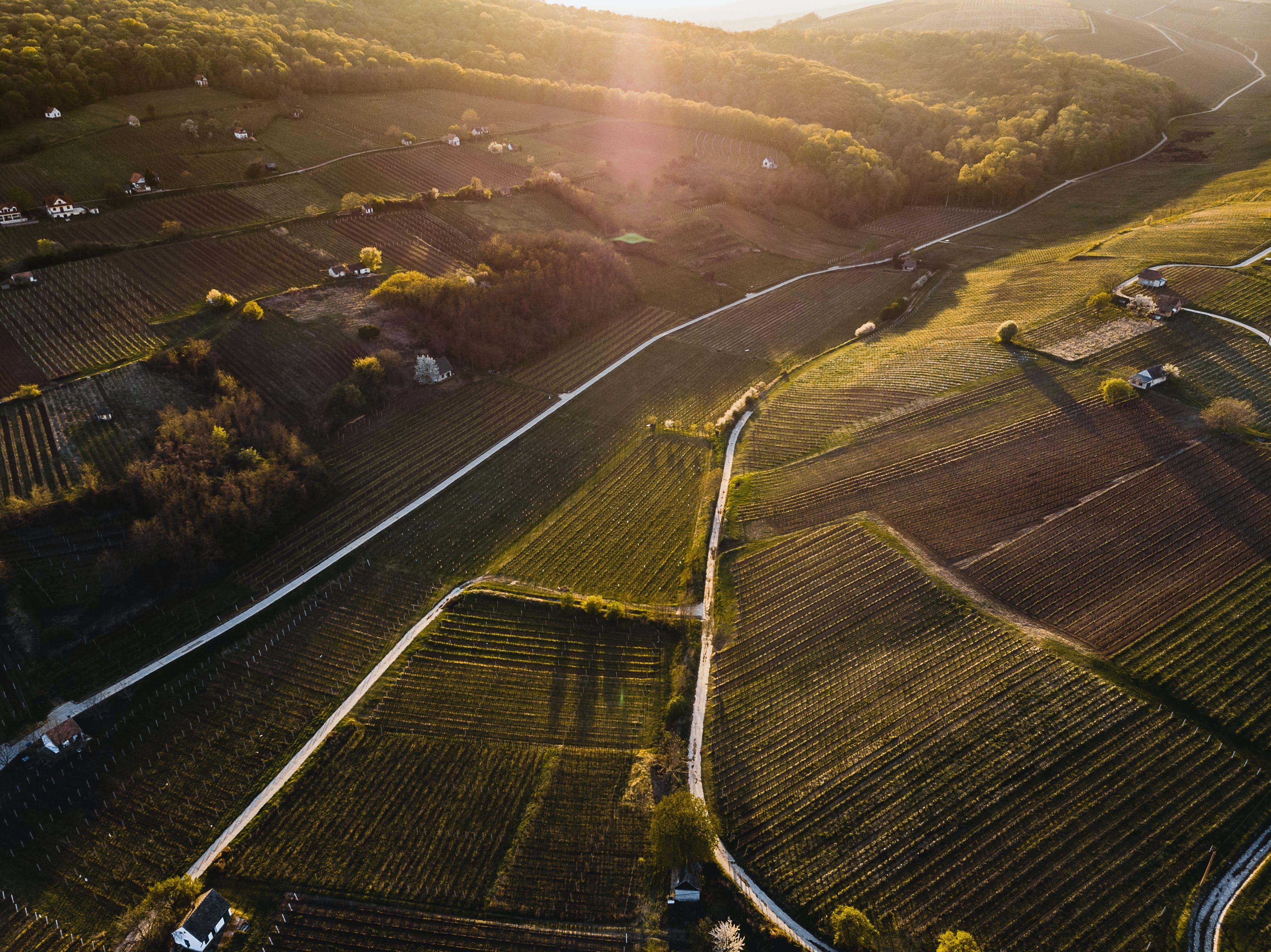 Δωρεάν στοκ φωτογραφιών με αγρόκτημα, ανάπτυξη, αυτοκινητόδρομος, γήπεδο