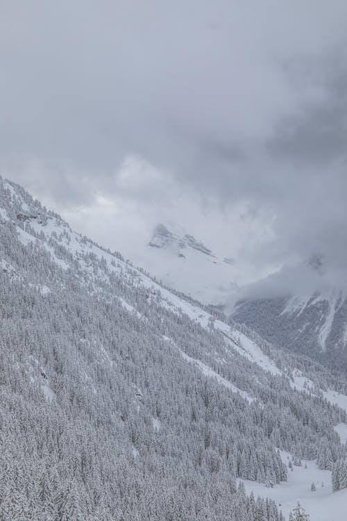 Бесплатное стоковое фото с белый, гора, зимний пейзаж, облако