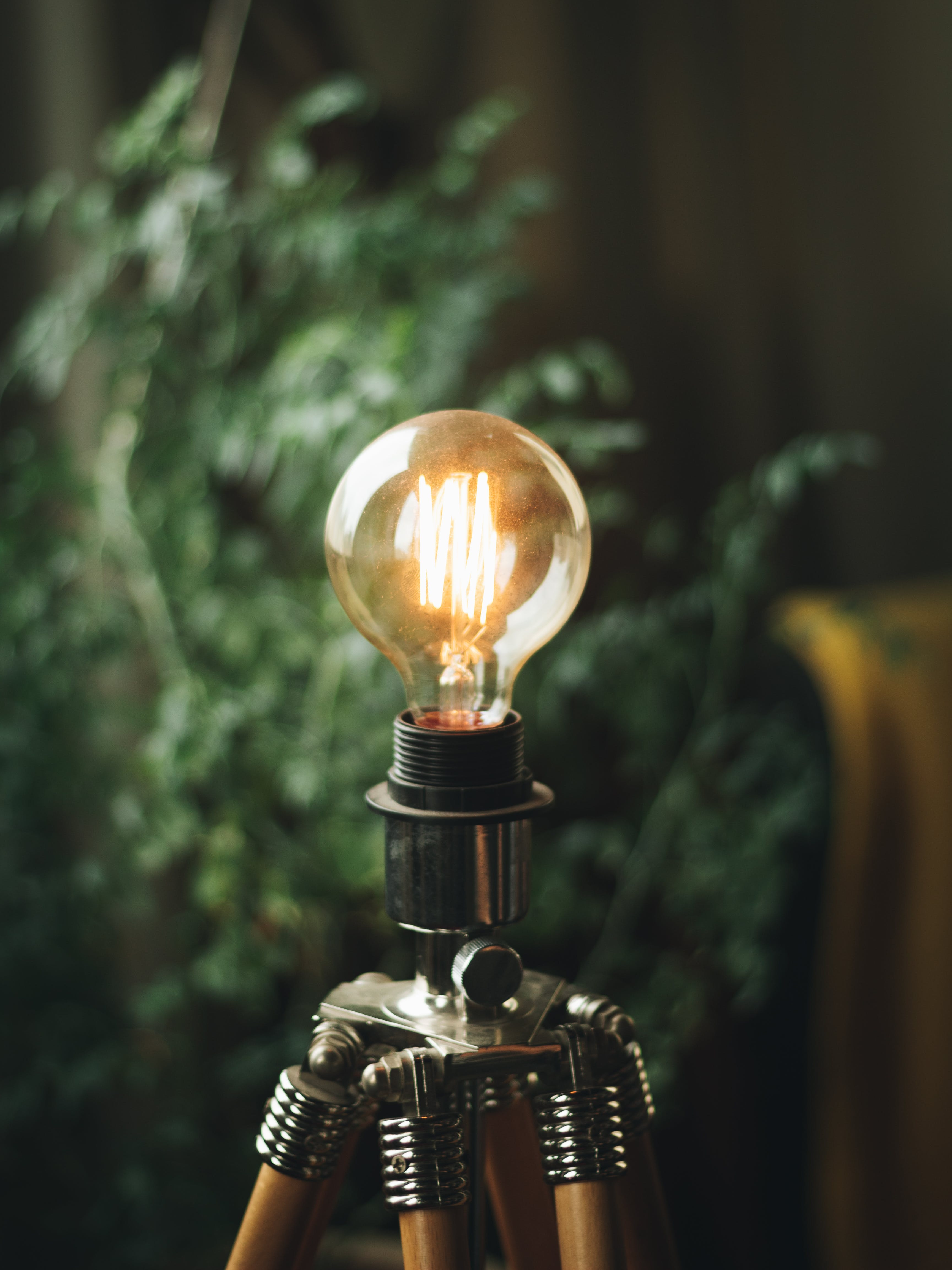 Selective Focus Photography of Bulb
