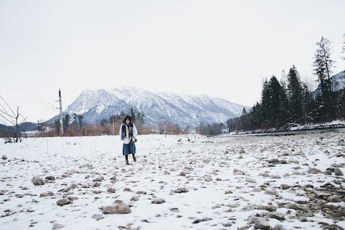 Základová fotografie zdarma na téma denní, denní světlo, holka, hory