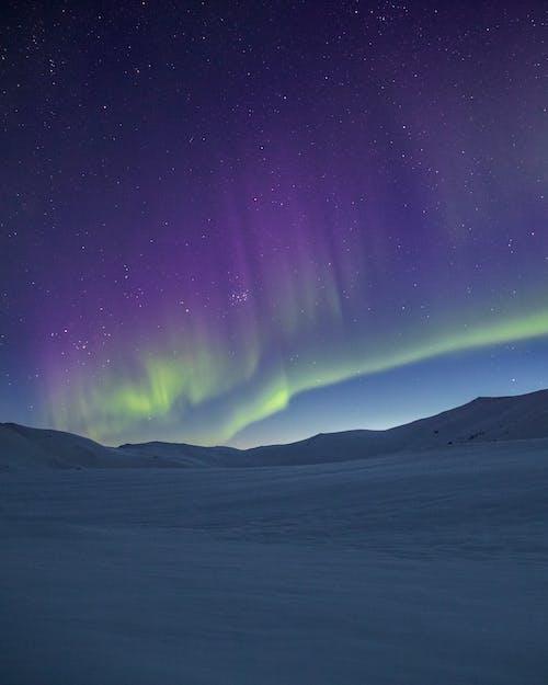 冷冰的, 夜空, 天性, 天文學 的 免费素材照片