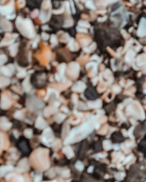 Free stock photo of 4k wallpaper, sea, seashore