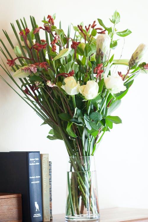 Fotobanka sbezplatnými fotkami na tému knihy, kvety, kytica, ľalia