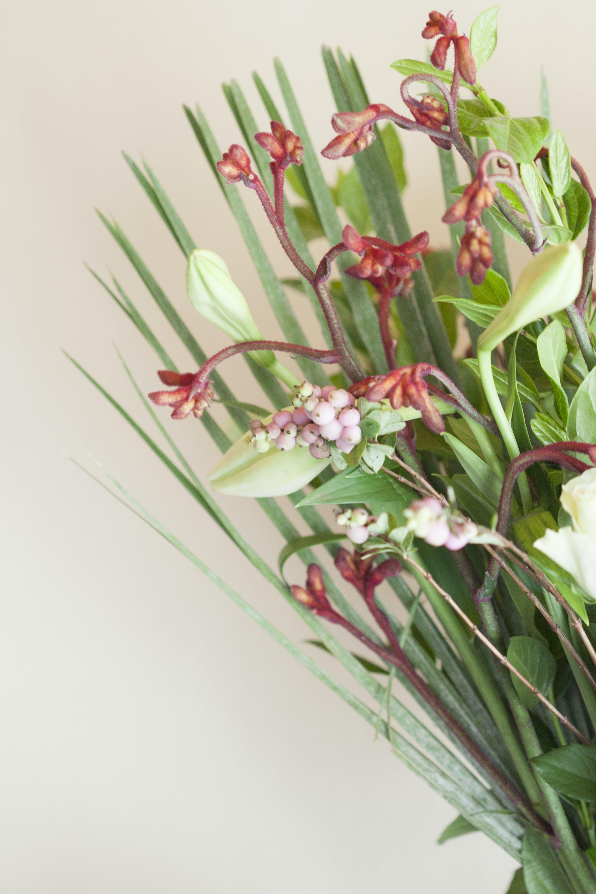 Kostenloses Stock Foto zu blumen, blumenstrauß, lilien, natur