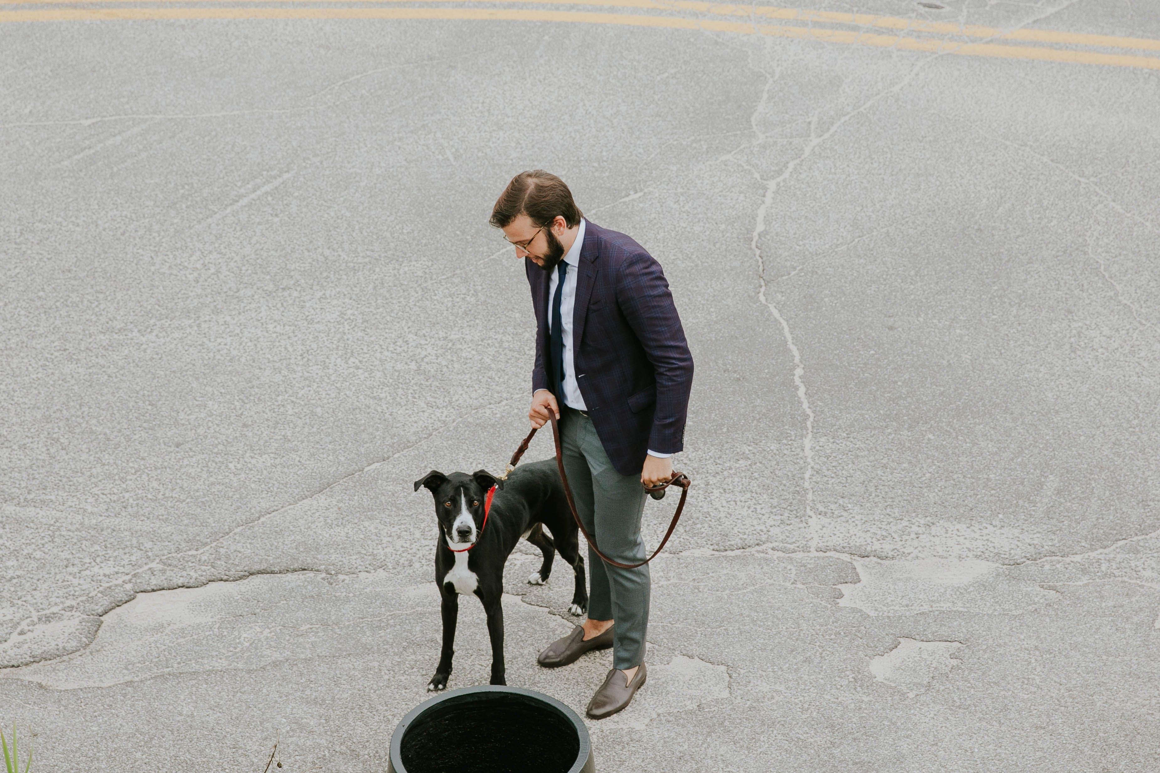 black suit, dog, Lee Hnetinka