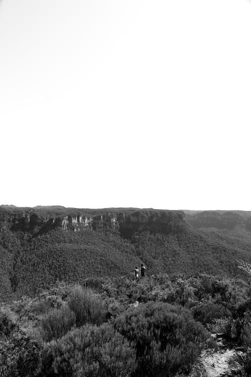 #nature, black and white, views