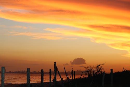 Free stock photo of beach, evening sun
