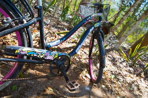 Free stock photo of abandoned, bicycle, jungle, love