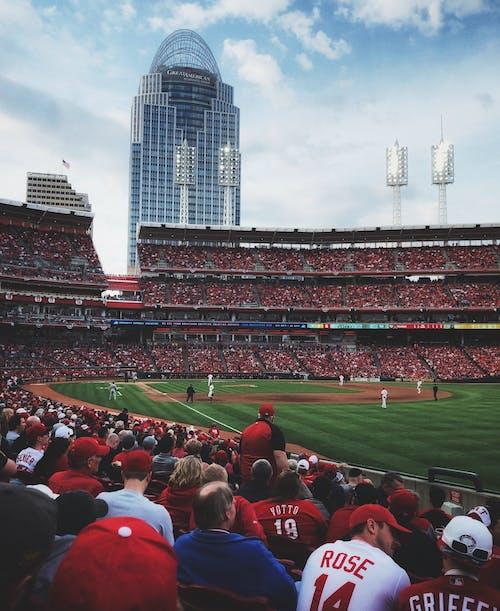 Foto stok gratis atlet baseball, bangku, baseball, bidang