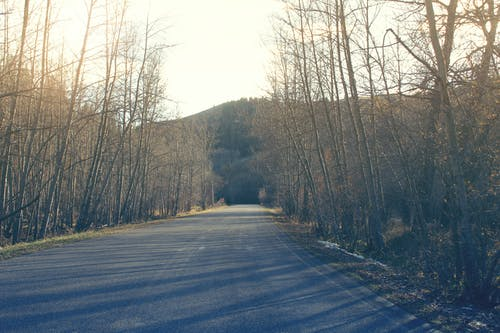 Free stock photo of mothernature, paved road