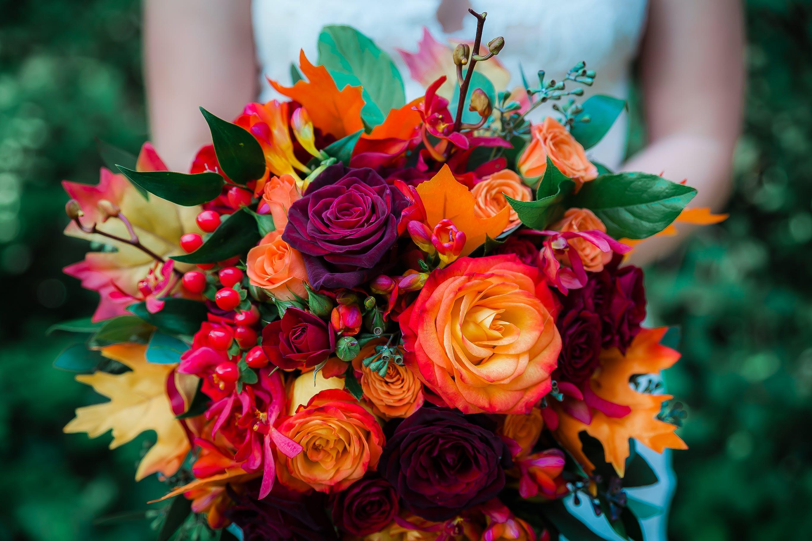 Základová fotografie zdarma na téma aranžování květin, flóra, květiny, kytice