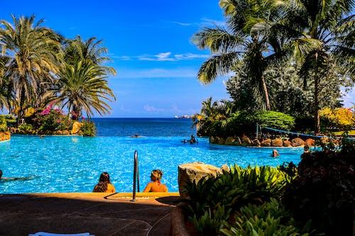 Gratis lagerfoto af bølger, hav, hotel, palmer