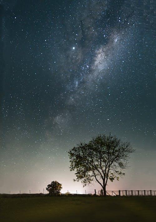 คลังภาพถ่ายฟรี ของ กลางคืน, กาแล็กซี, ดวงดาว, ดาราศาสตร์
