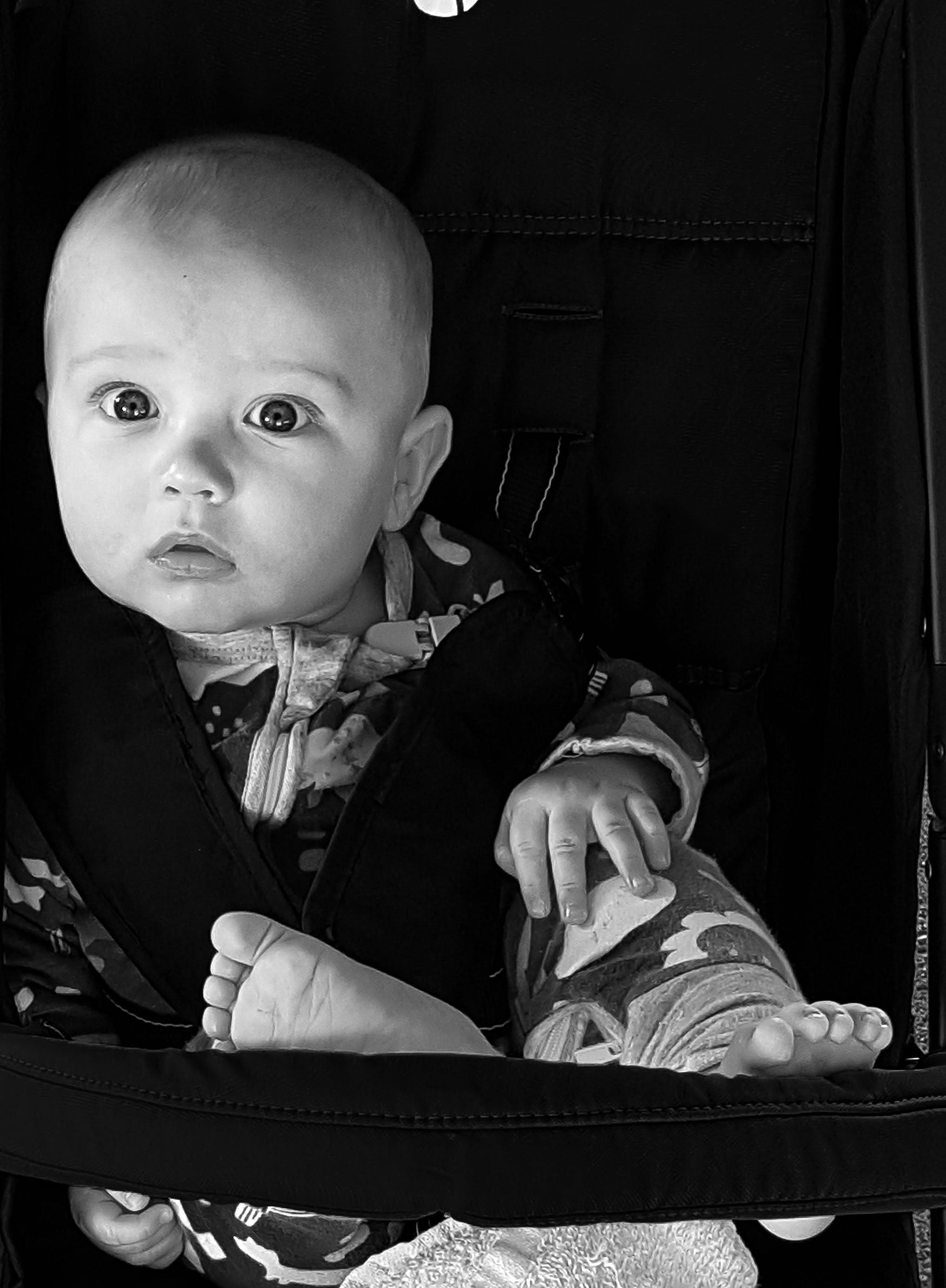 Immagine gratuita di 6 mesi, avviso, bambino, bianco e nero