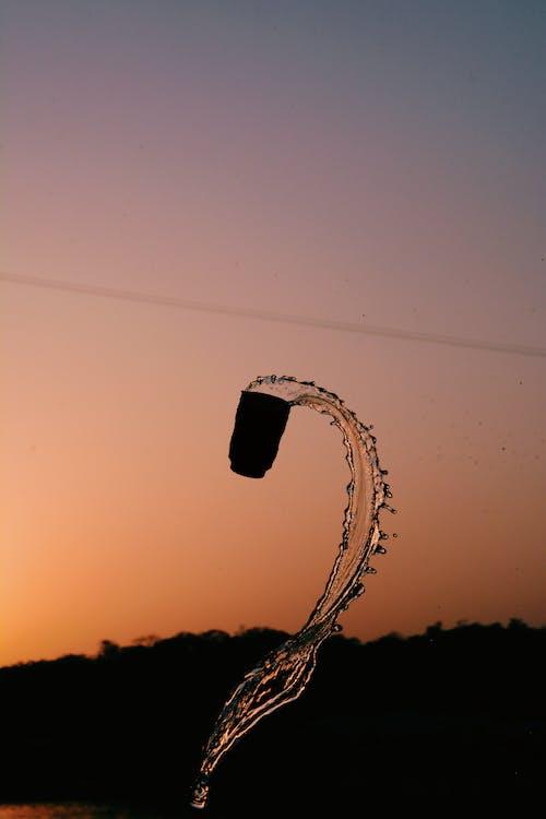 Foto stok gratis backlit, bayangan hitam, cangkir, Fajar
