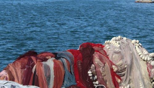 Ingyenes stockfotó blues, halhálózat, hálózat, kék tenger témában