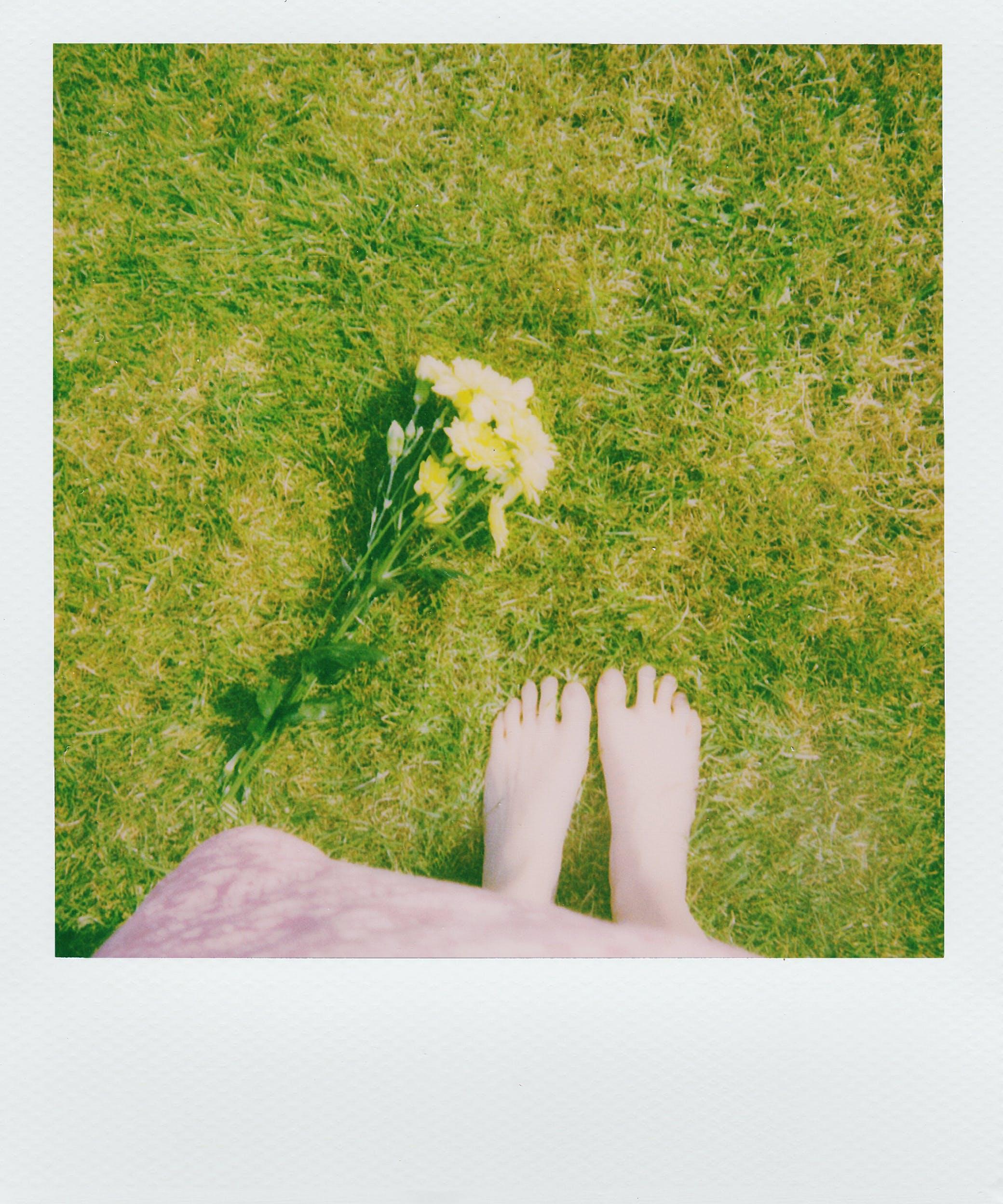 Person Standing on Grass Beside Petaled Flower