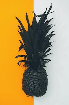 Free stock photo of art, orange, pineapple, black