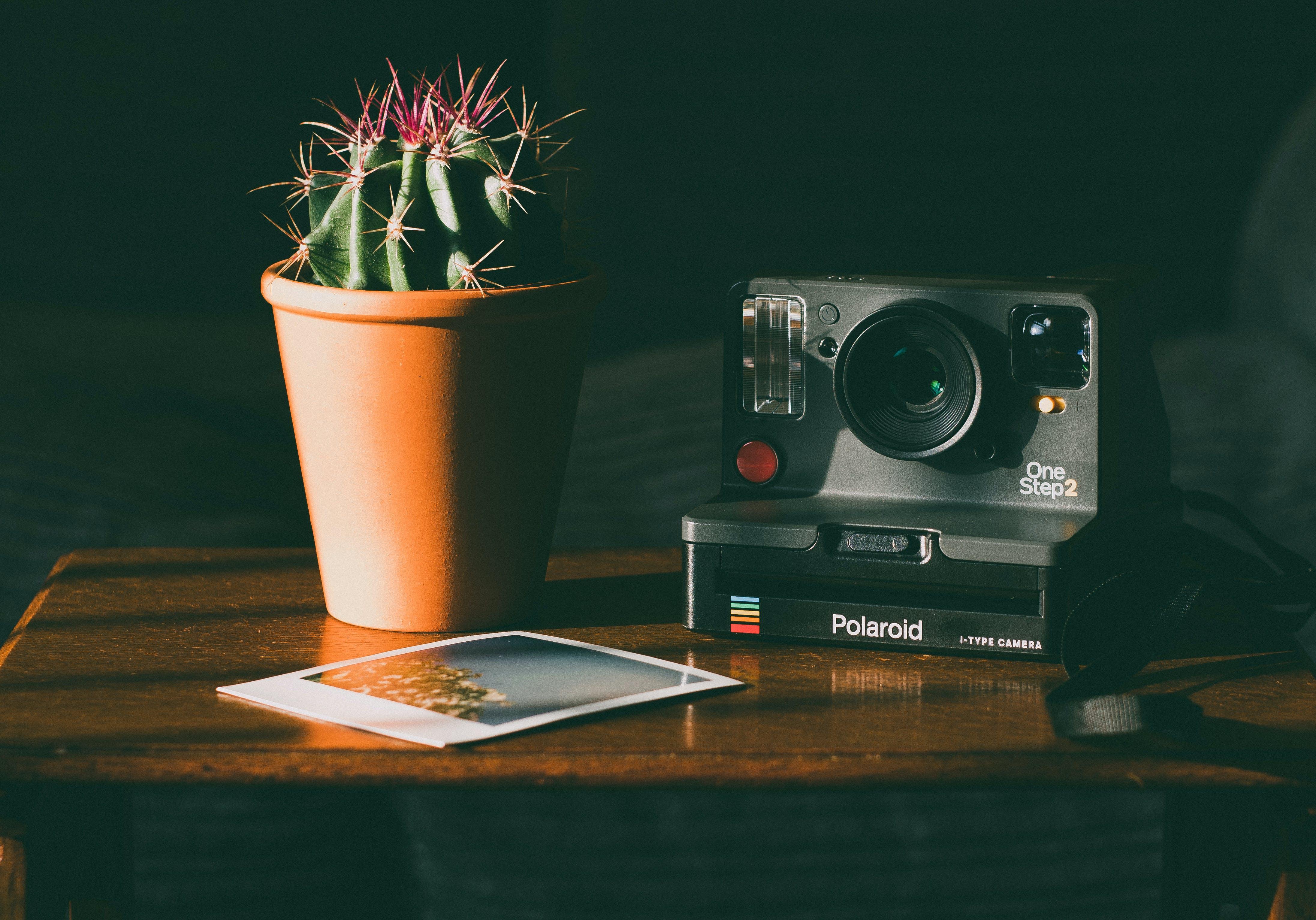 analogkamera, bild, elektrik