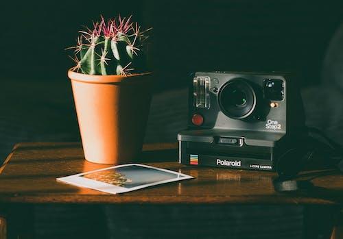 Gratis lagerfoto af analogt kamera, billede, elektronik, enhed