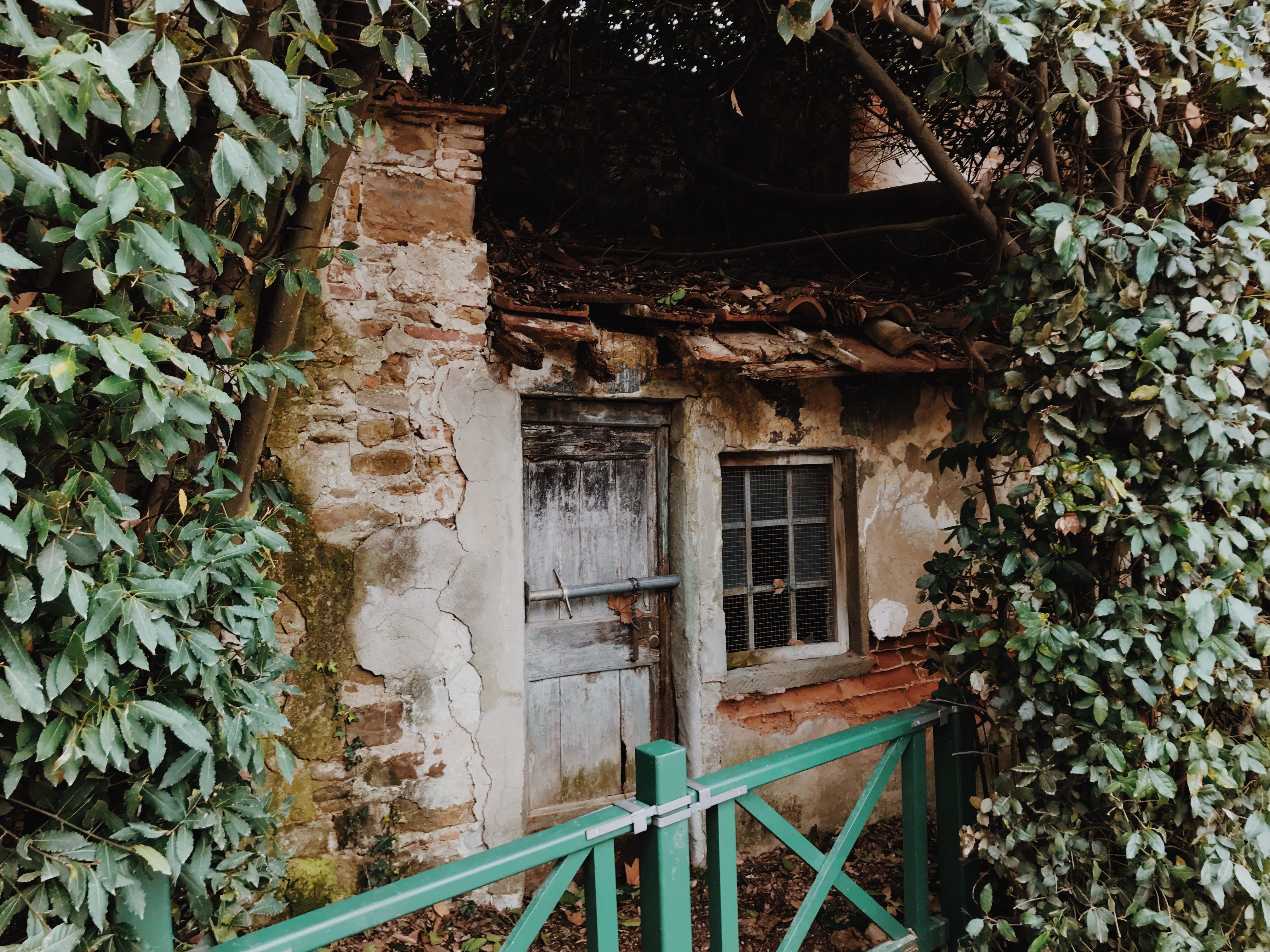 Foto profissional grátis de antigo, ao ar livre, arquitetura, árvore