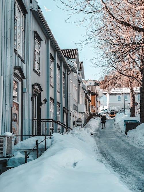 Foto profissional grátis de arquitetura, cidade, coberto de neve, com frio