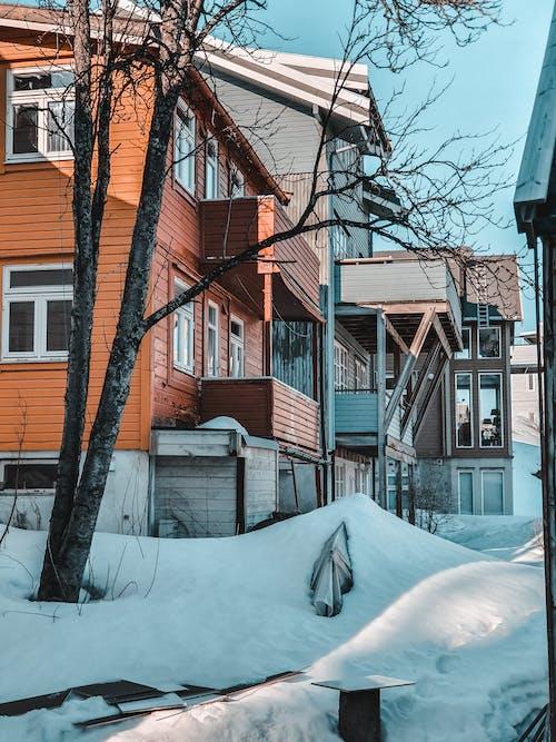 Kostnadsfri bild av arkitektur, gata, hem, hus