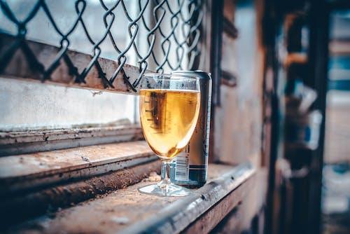 Immagine gratuita di bicchiere di birra, birra, birra artigianale, birre
