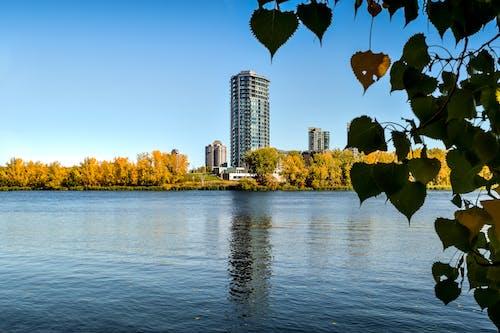 Ingyenes stockfotó épület, folyó, magas épület, montreal témában