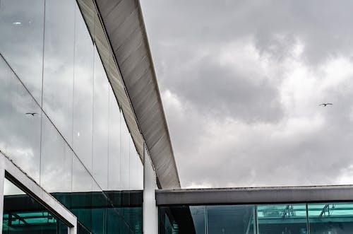 Darmowe zdjęcie z galerii z budynek, latać, latanie, lot
