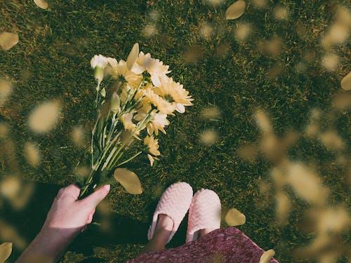 Бесплатное стоковое фото с ноги, поле, трава, флора