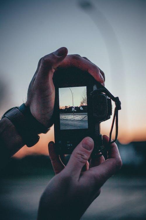 digitális kamera, felvesz, fényképészet