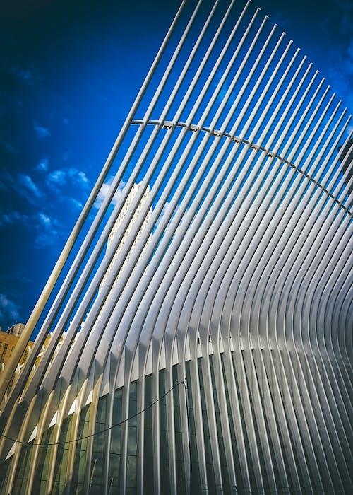 Free stock photo of lower manhattan, oculus, sculptural building, The oculus building