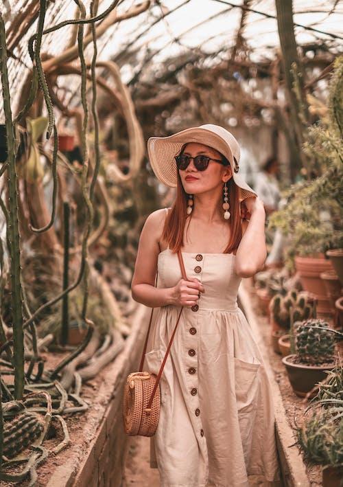 Kostenloses Stock Foto zu bokeh, botanischer garten, fashion, ferien