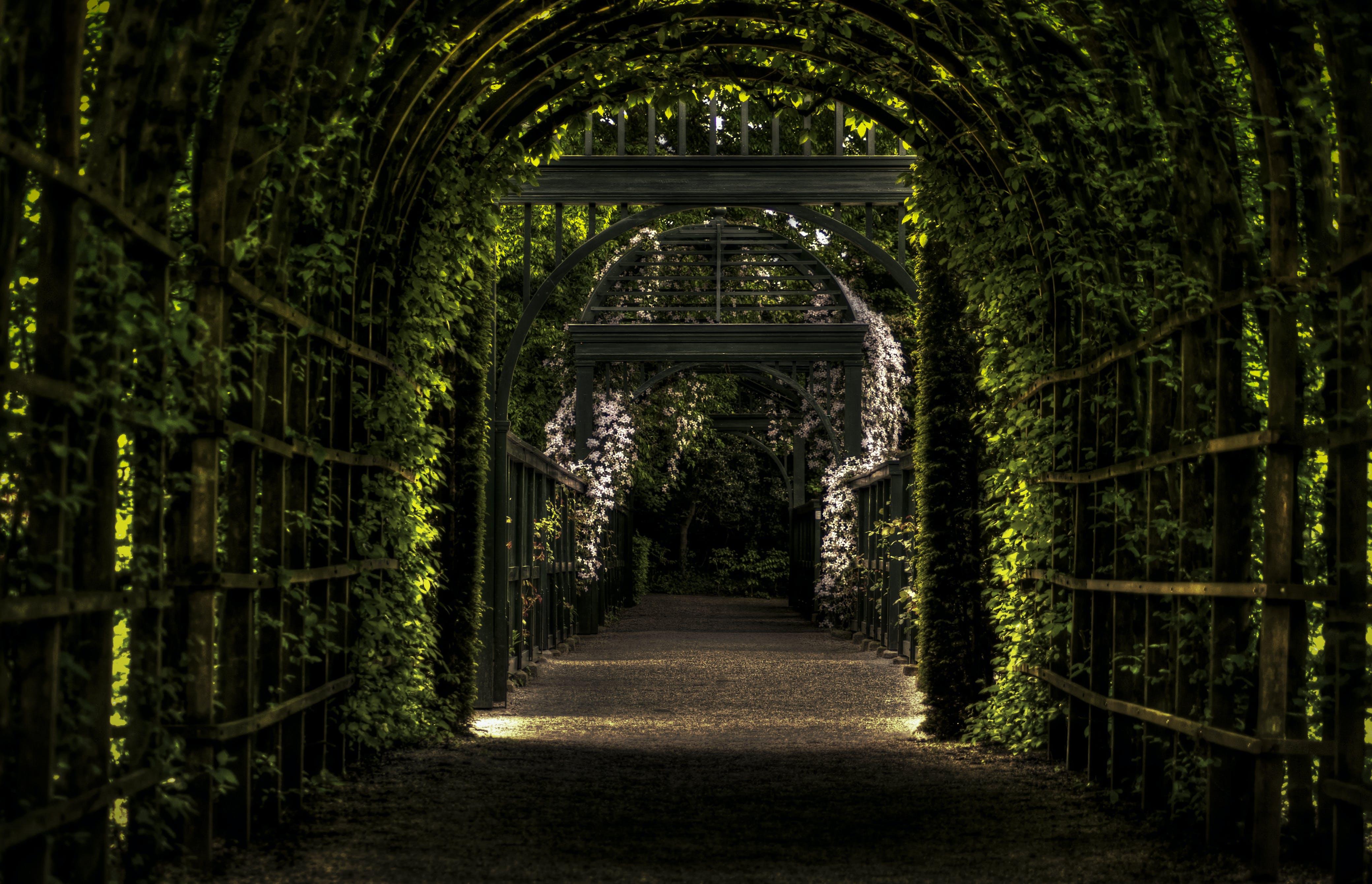 garden, gateway, groningen