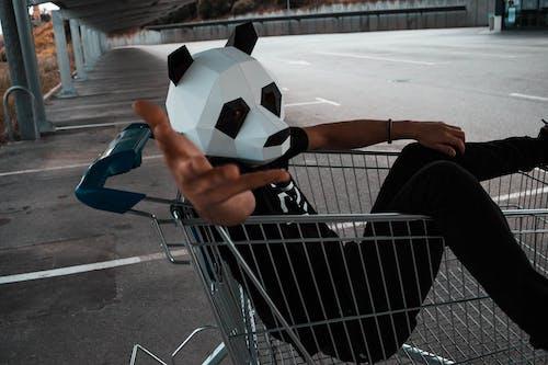 Kostenloses Stock Foto zu einkaufswagen, karte, kostüm, mann