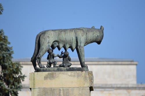 Free stock photo of rem, romul, romulus and remus statue