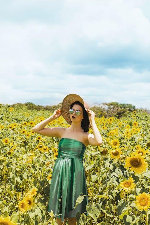 champ de tournesols, clairière, femme