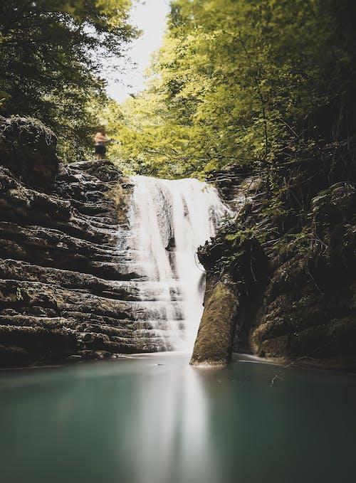 Gratis lagerfoto af å, flod, kaskade, malerisk