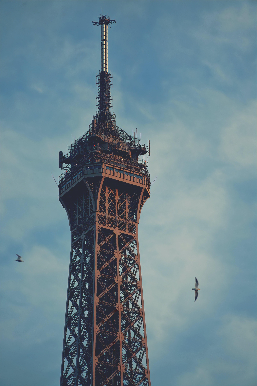Kostenloses Stock Foto zu eiffelturm, paris