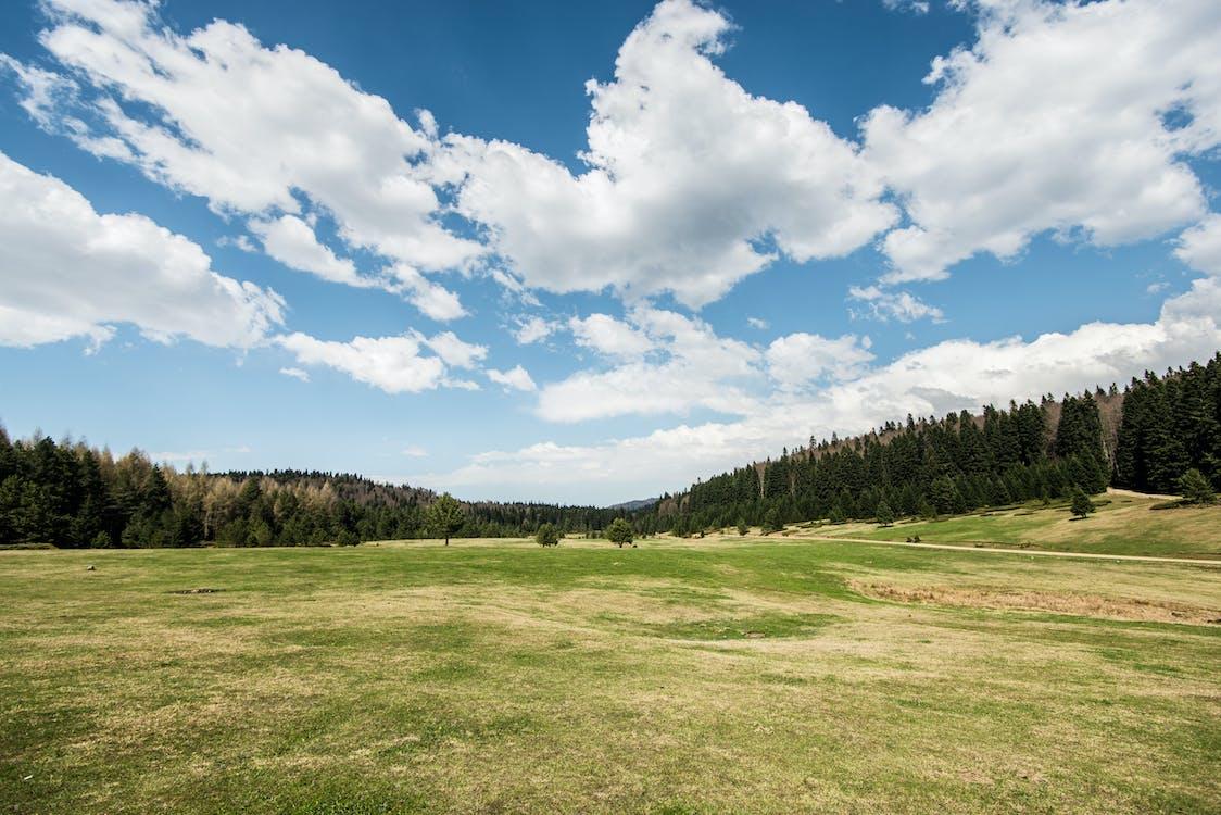 4k-háttérkép, békés, domb