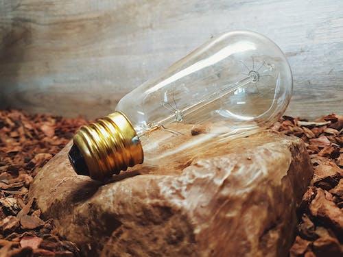 岩石, 燈泡, 特寫 的 免费素材照片
