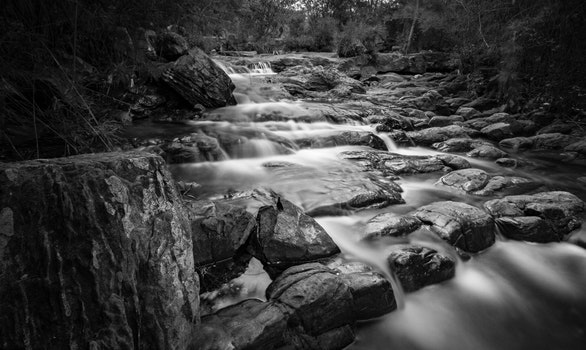 Grayscale Time Lapse Photography of River