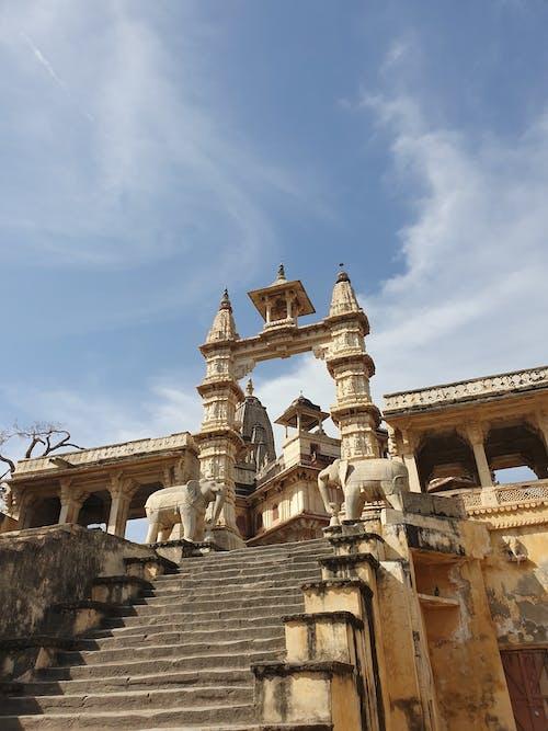 Foto stok gratis gajah, India, jaipur, Kuil
